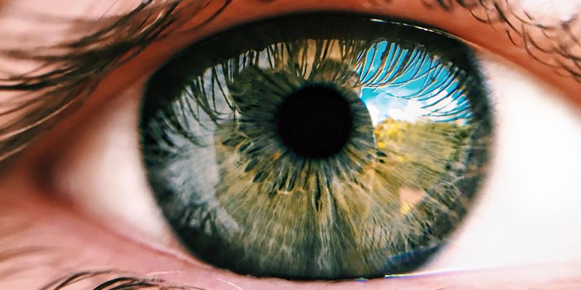 Can saffron stop macular degeneration?